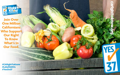 California Landmark Initiative to Label GMO Food