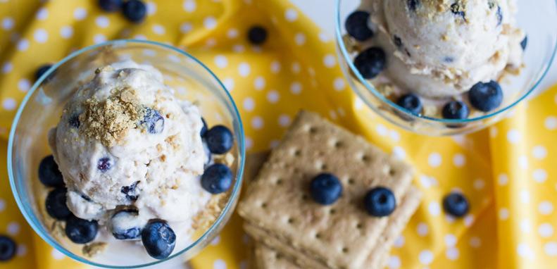 Blueberry Pie Frozen Yogurt