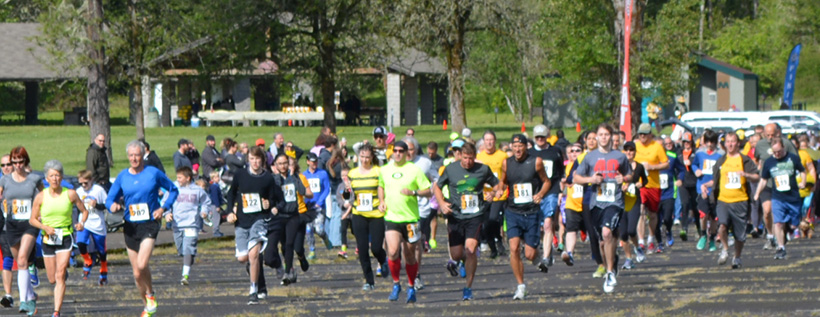 Running for the Bees
