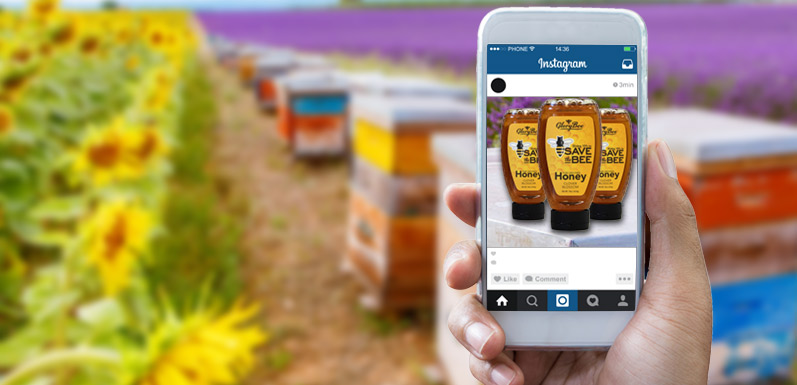 GloryBee Introduces New honey - Made by Bees, for Bees