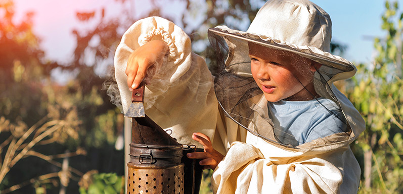 4 Tips For Introducing Your Child To The Basics Of Beekeeping