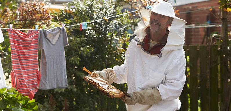 Oregon Residential Beekeeping Legislation:  What is House Bill 2653?